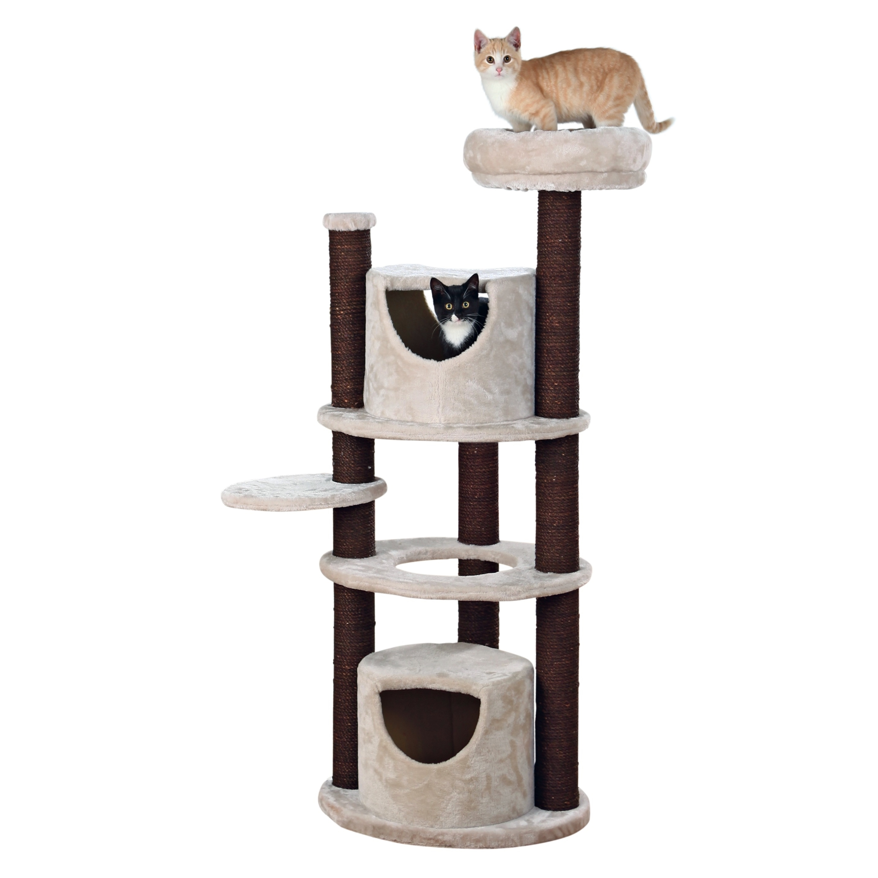 Solia Cat Scratching Tree